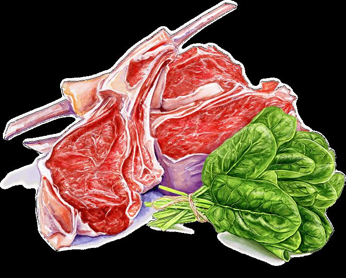 meat lettuce