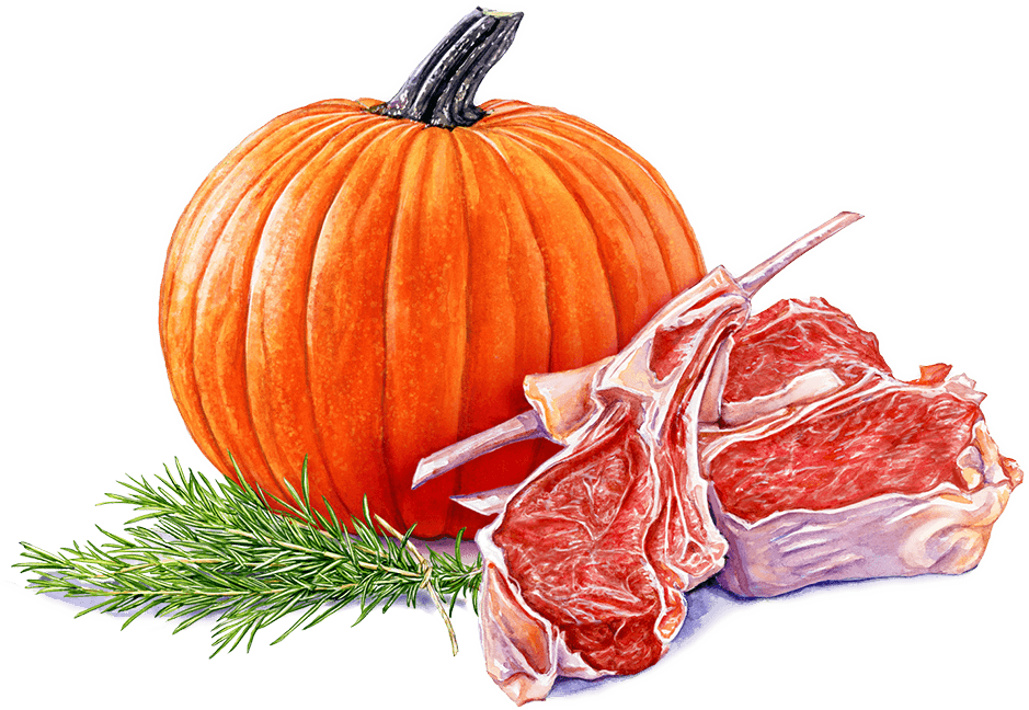 pumpkin meat