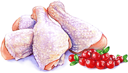 chicken cranberries