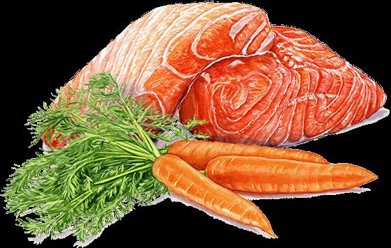 salmon carrots